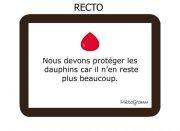 metagramm-carte-rouge-recto